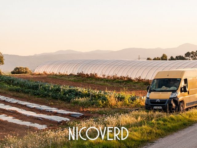 Nicoverd – Maraîchage Bio