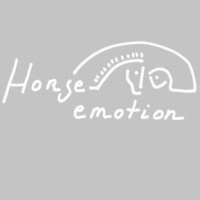 Horse emotion